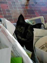 Ezri in recycling