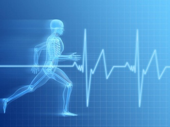 exercise heartrate