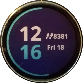 Garmin stock watch face with steps