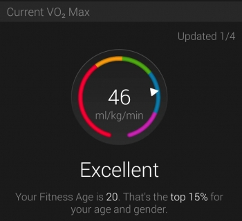 VO2 Max on Garmin Connect