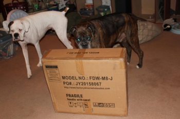 Shipping box. Dogs checking it for contraband.
