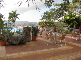 People enjoying the view by the pool,<br>in the company of the hen and chicks.