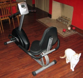 Our old recumbent bike, Spock looking on.